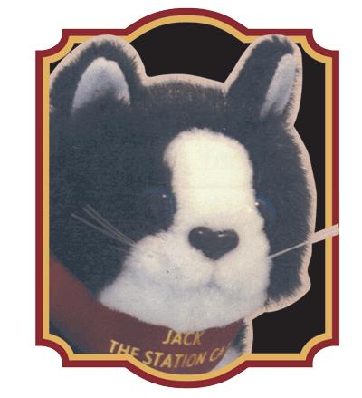 jack-station-cat